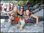 Mel, Jess and I with one of the wild monkies on Phi Phi Don beach