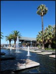 Fountains and palm trees in Perth, Australia